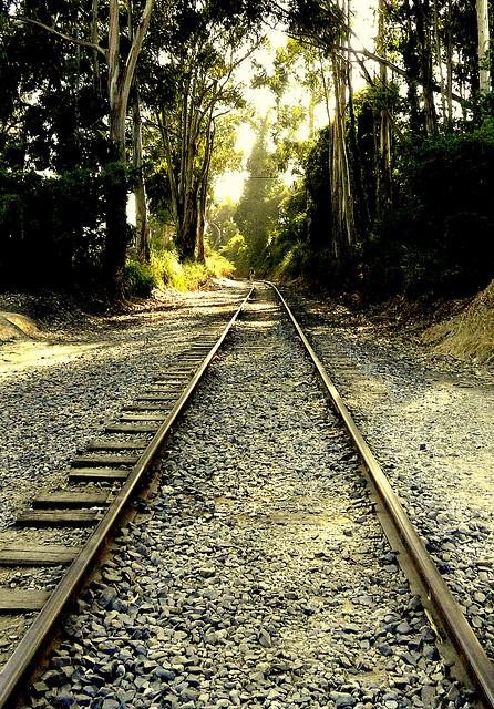 Tracking Trains